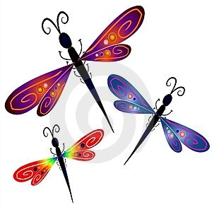 Pin by driftinn on. Dragonfly clipart beautiful dragonfly