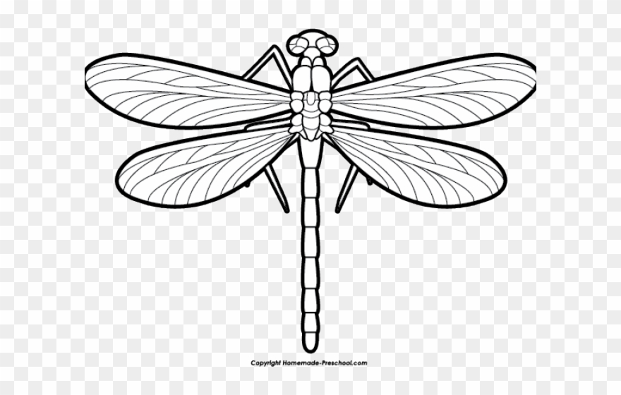 Scroll dragon fly png. Dragonfly clipart black and white