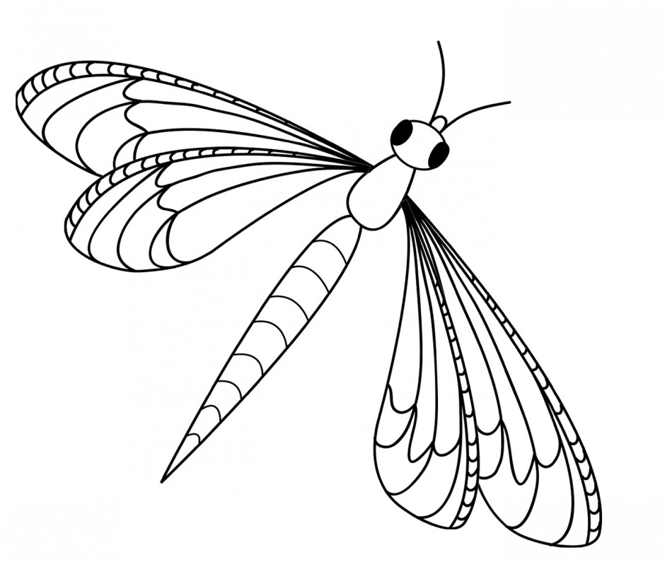Dragonfly clipart colored. Free image download clip