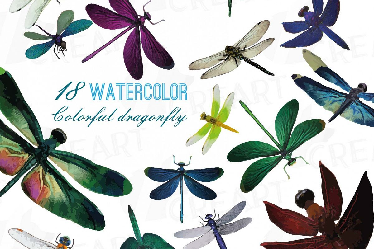 Dragonfly clipart colorful dragonfly. Watercolor clip art collection