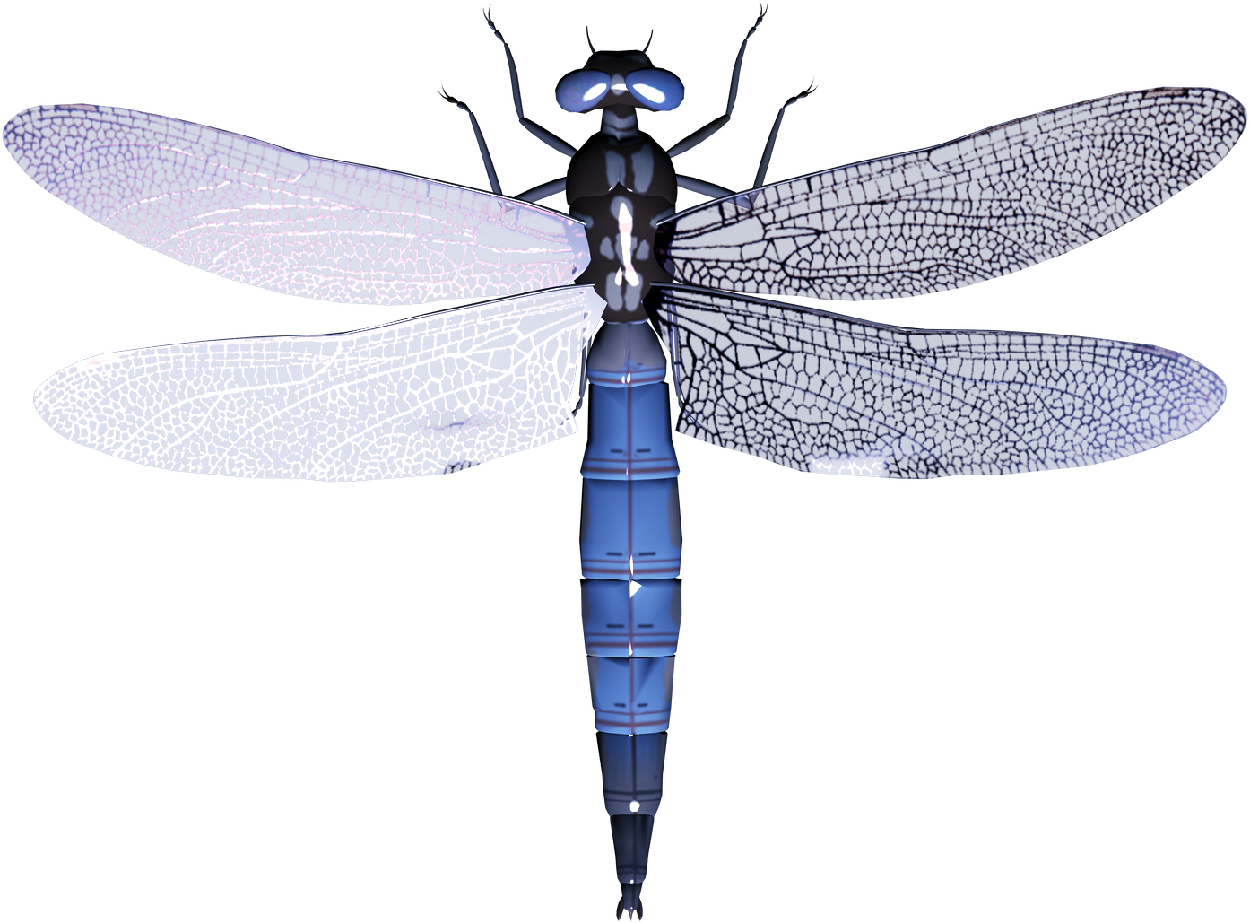 Worm clipart maggot. Dragonfly png images free