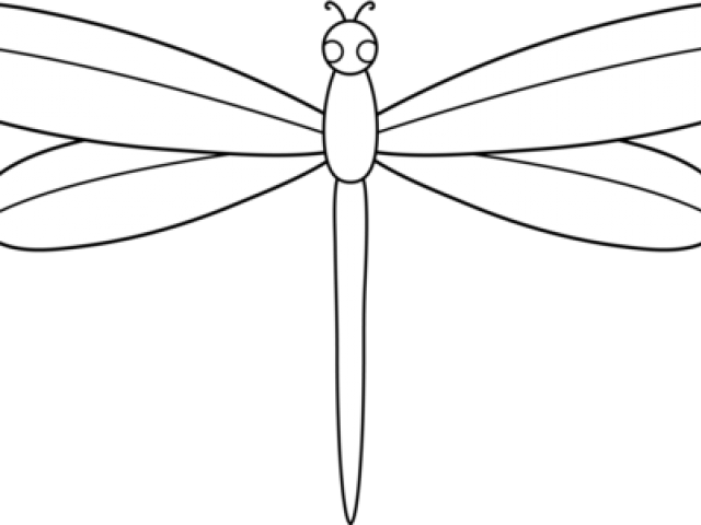 Dragonfly clipart copyright free. Cute owl download clip