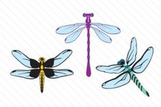 best images dragon. Dragonfly clipart creative