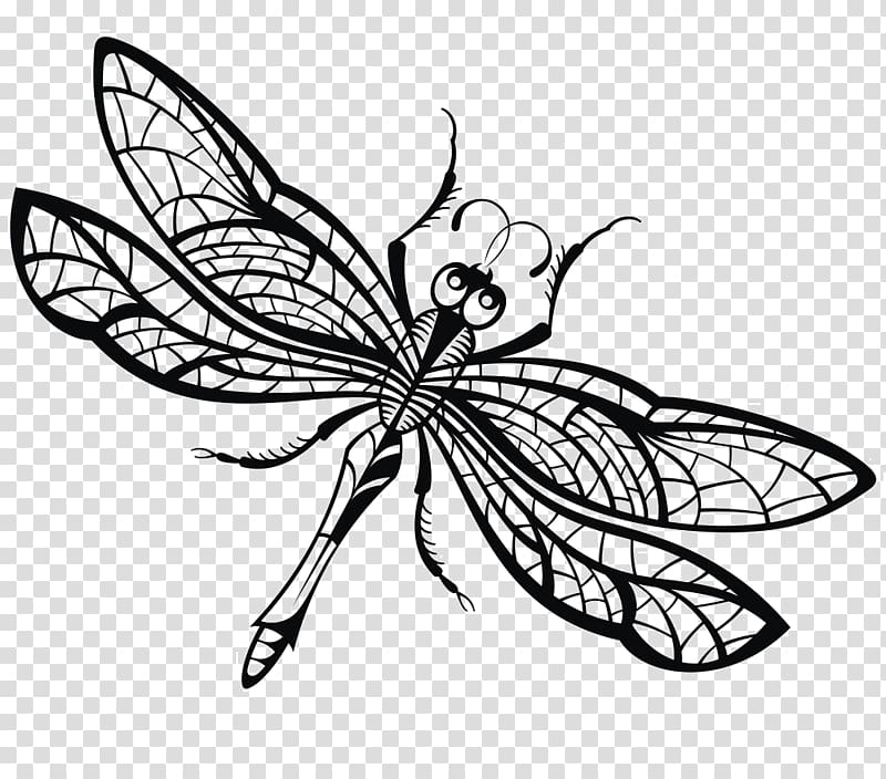 Dragonfly clipart creative. Drawing illustration