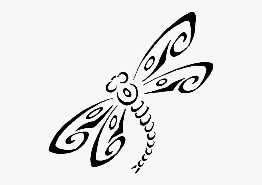 Drawn transparent png . Dragonfly clipart dragonfly tattoo