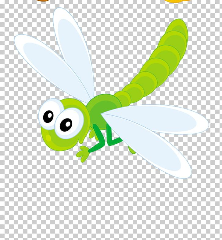 Png butterfly cartoon . Dragonfly clipart garden insect