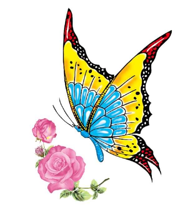 Dragonfly clipart heart trail.  bc be png