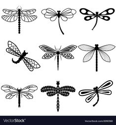 Dragonfly clipart jpeg.  best images dragon