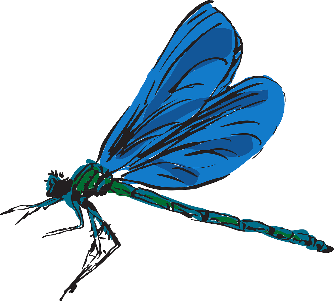 Free content clip art. Dragonfly clipart jpeg