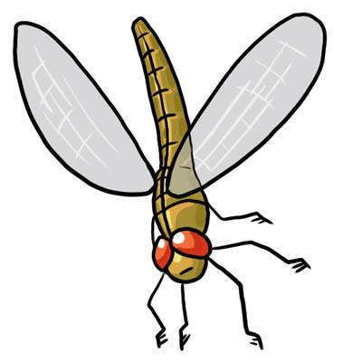 Dragonfly clipart jpeg. Free clip art clipartix