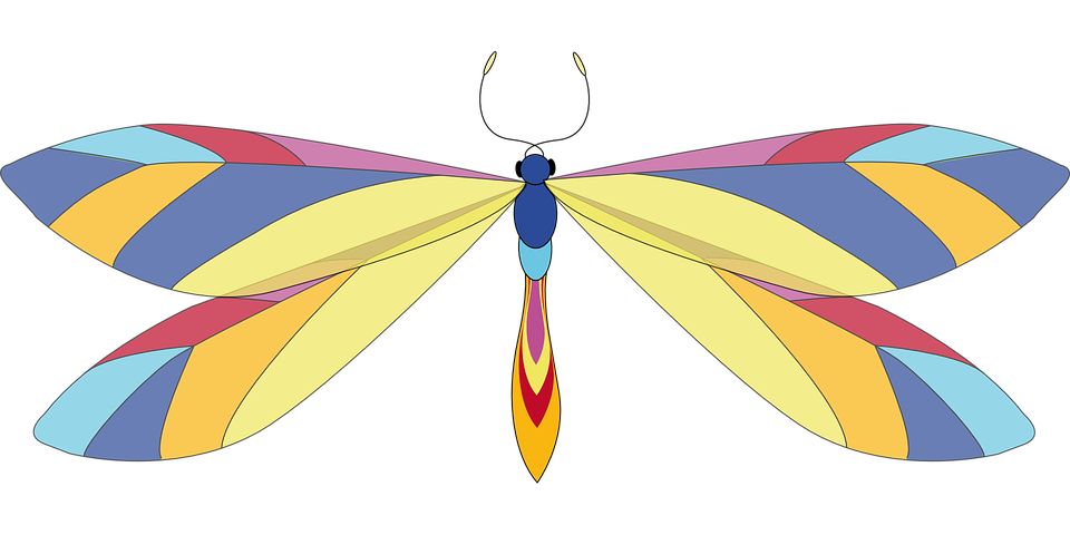 Dragonfly clipart psychedelic. Graphics group free vector