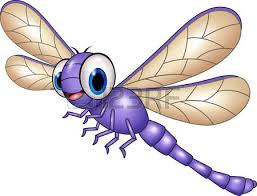 dragonfly clipart real