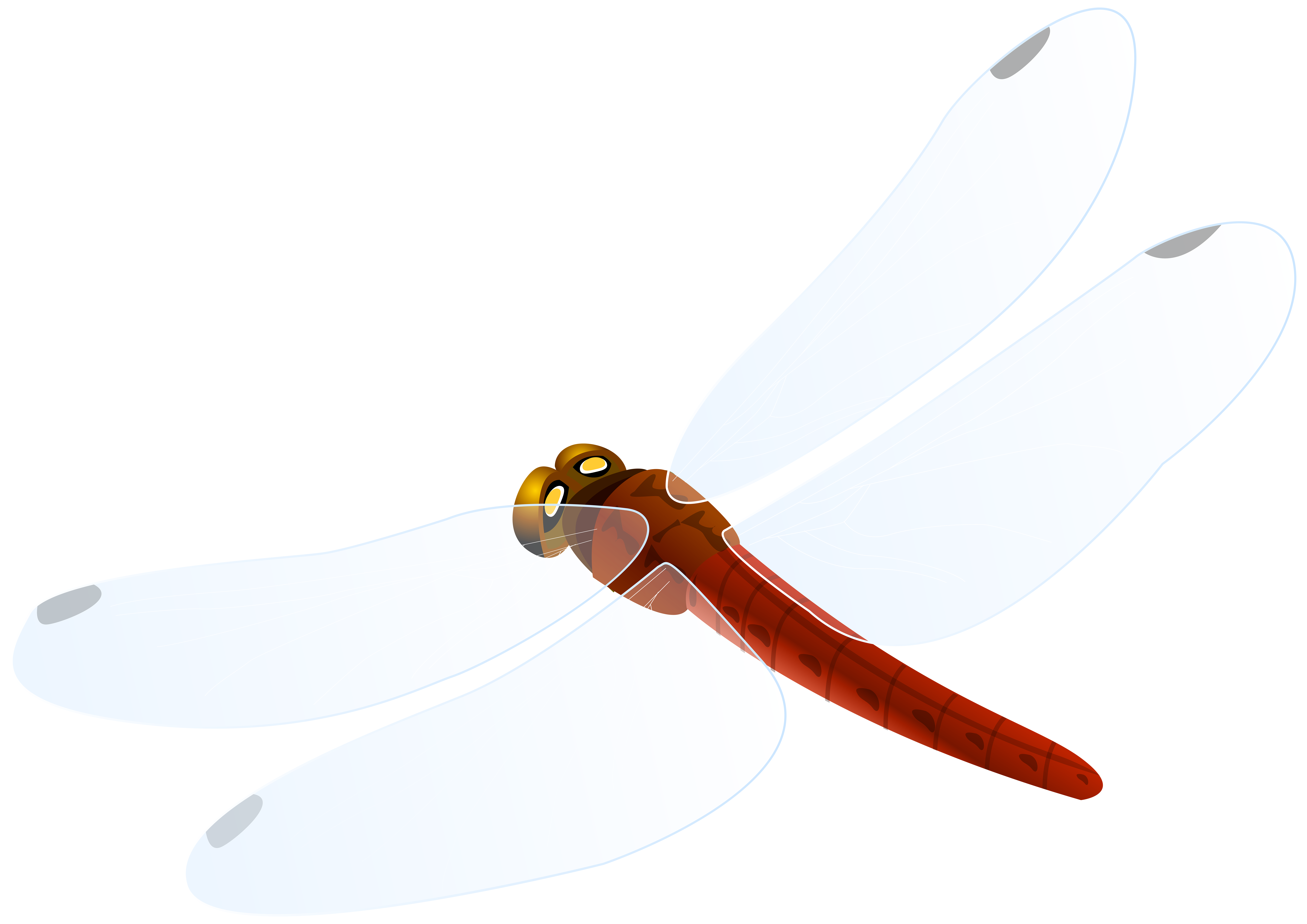 Png best web. Dragonfly clipart red dragonfly