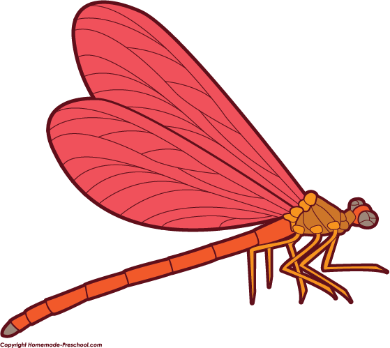 Free image download clip. Dragonfly clipart red dragonfly