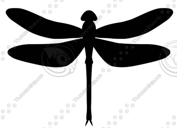 Shapes ai black and. Dragonfly clipart shape