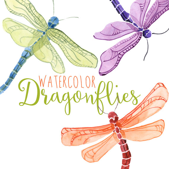 Fly clipart summer. Watercolor dragonflies dragonfly clip