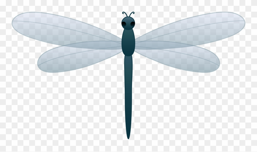 Dragonfly clipart teal. Free download