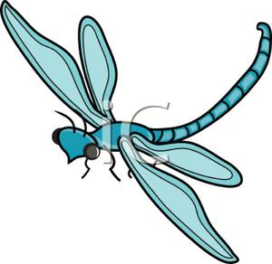 Blue panda free images. Dragonfly clipart teal