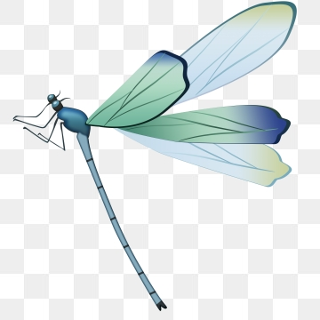Images png format clip. Dragonfly clipart turquoise