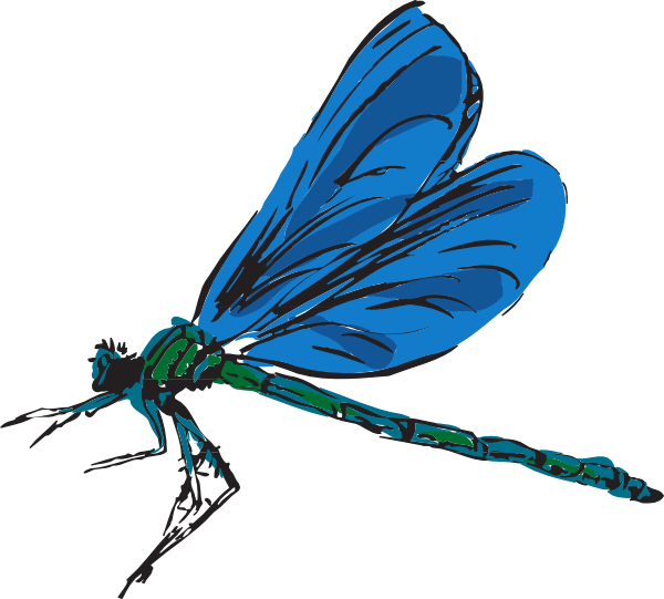 Dragonfly clipart turquoise. Art clip at clker