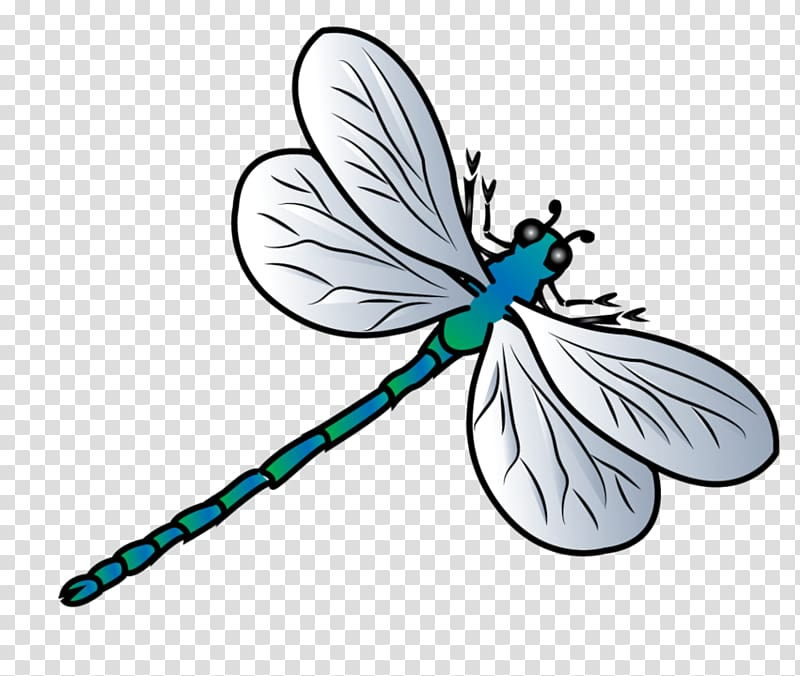Butterfly transparent background png. Dragonfly clipart two