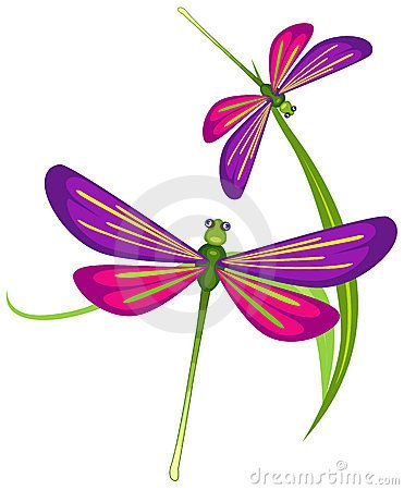 Dragonfly clipart two. Cartoon stock illustrations