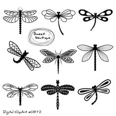 best images dragon. Dragonfly clipart whimsical
