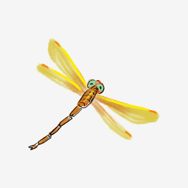 Illustration flying wings . Dragonfly clipart yellow dragonfly