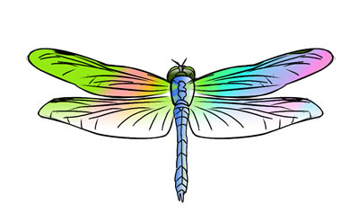 free clip art. Dragonfly clipart