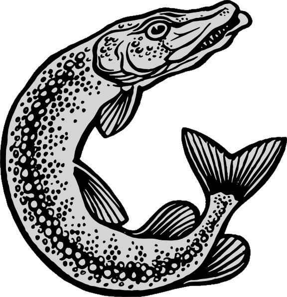 Fishing clipart basket. Jumping fish clip art