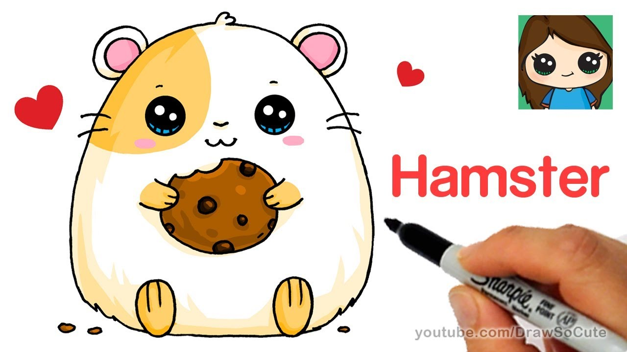 Hamster clipart easy. How to draw a