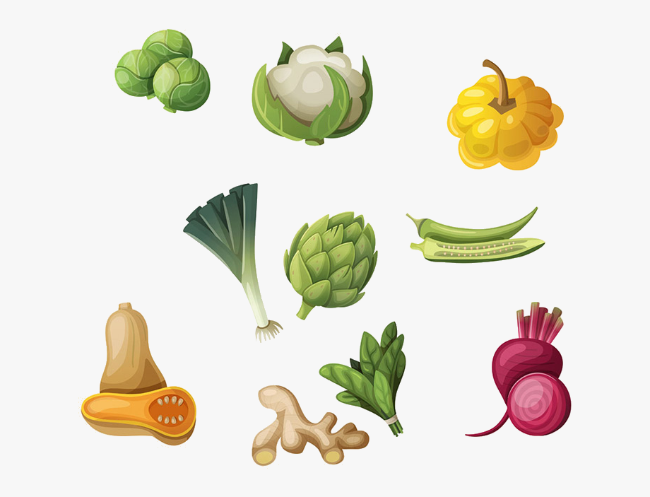 Lettuce letsugas images of. Drawing clipart show