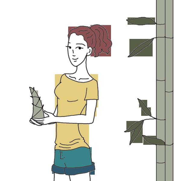 Dreams clipart femininity. Isolated bamboo plants dream