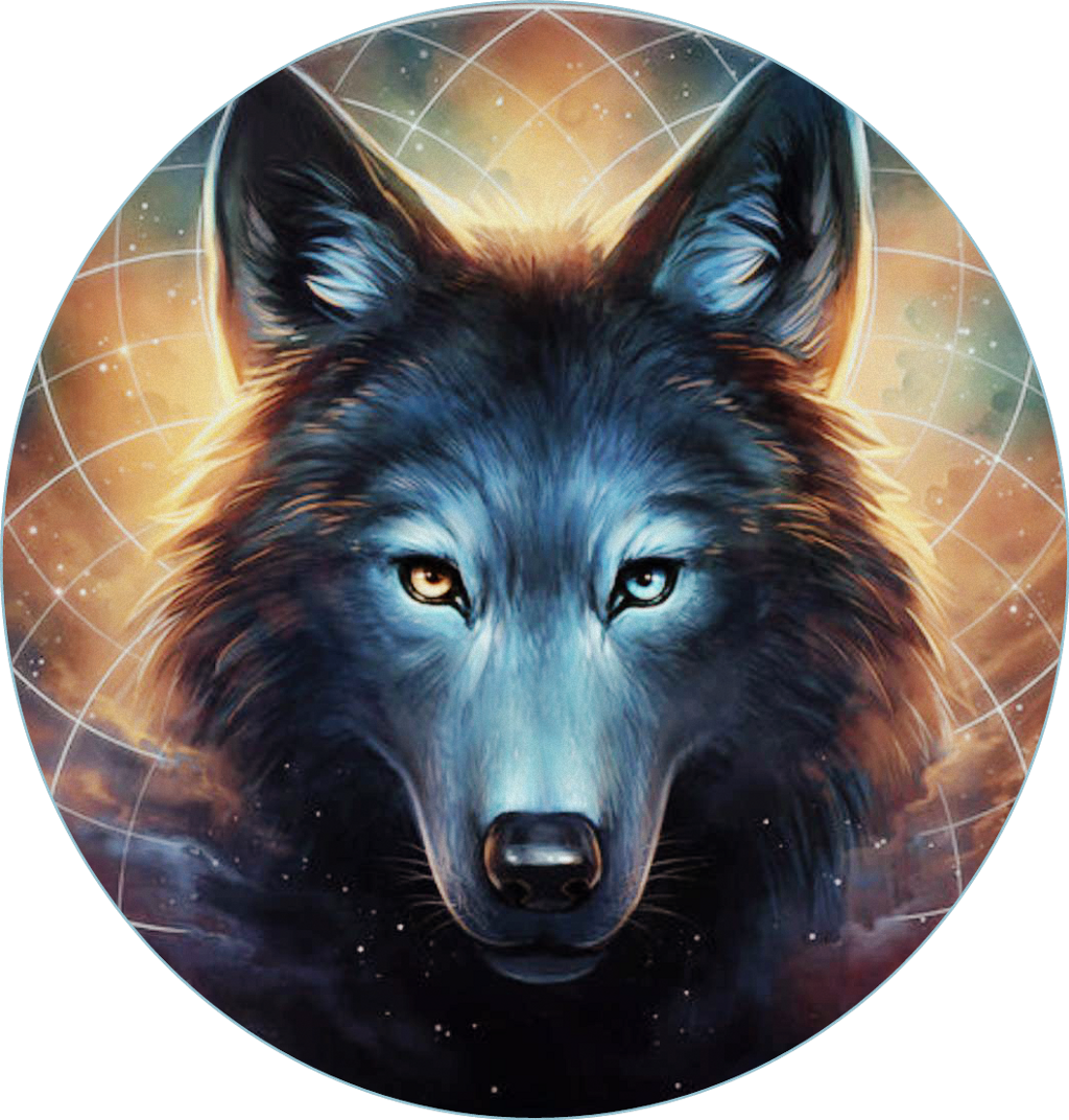 Wolf clipart native american wolf. Dreamcatcher