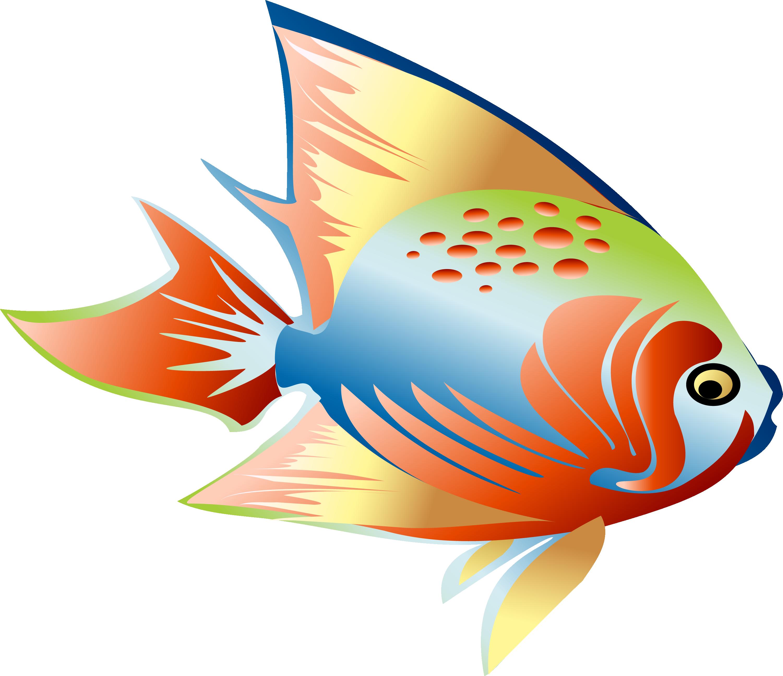 Goldfish clipart colorful. Fish clip art dream