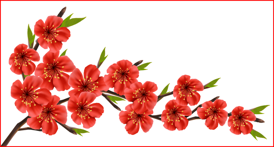Dress clipart spring. Fascinating red branch png