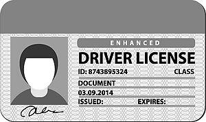 Drivers license clipart printable. Clip art panda free
