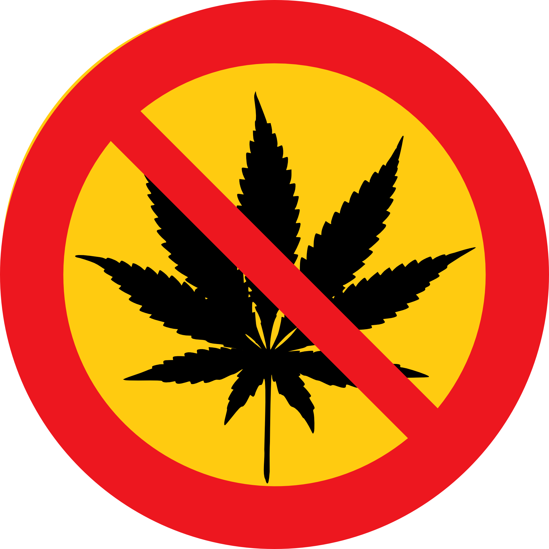 Marijuana clipart easy. Cannabis addiction is linked