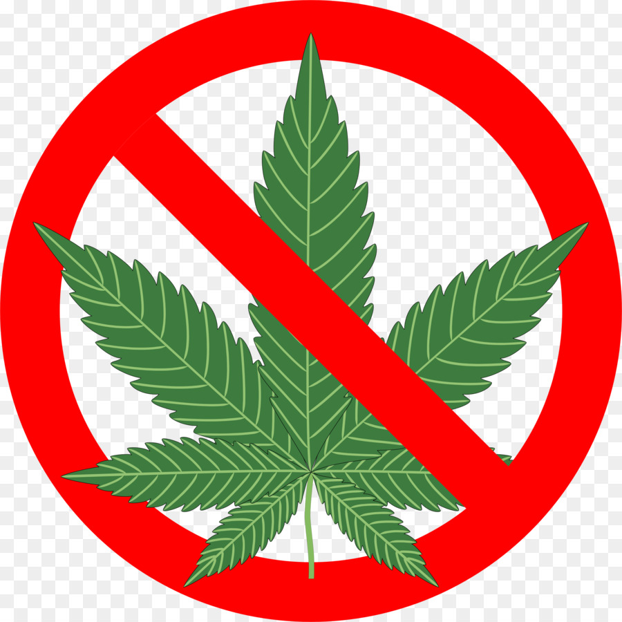 Family tree background leaf. Marijuana clipart drug