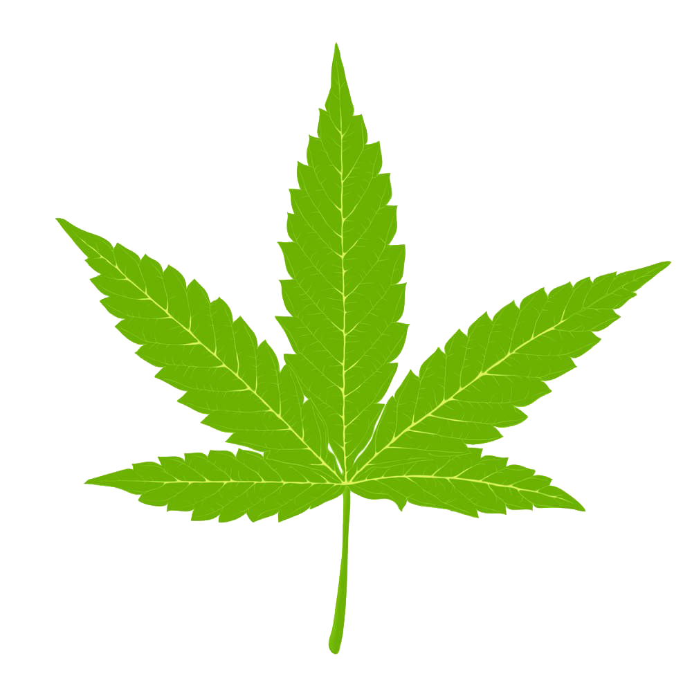 Marijuana clipart hemp. Cannabis clip art indian