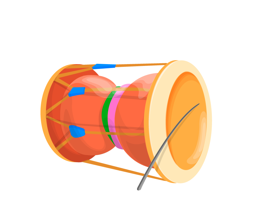 Drum clipart insturments. Musical instruments cartoon transprent