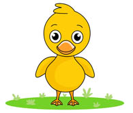 Duck clipart. Free clip art pictures