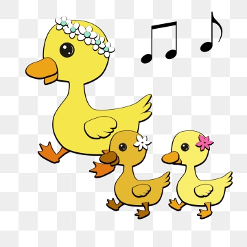 Download free transparent png. Ducks clipart small duck