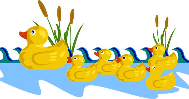 Little small online class. Ducks clipart five