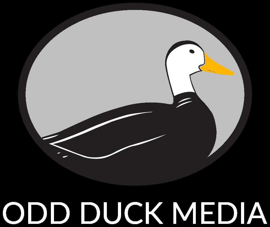 Duckling goslings