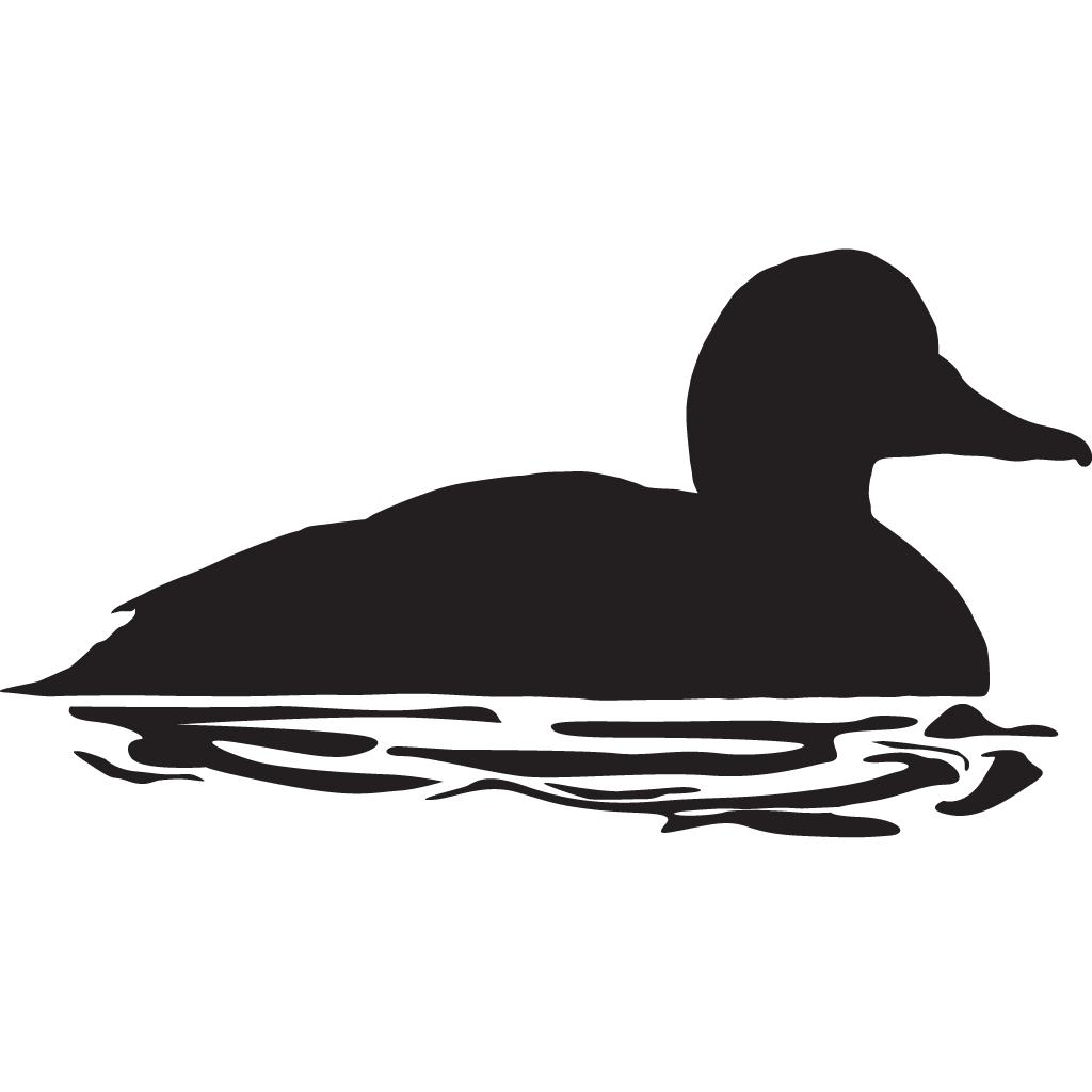 Ducks clipart brood. Common goldeneye overview all