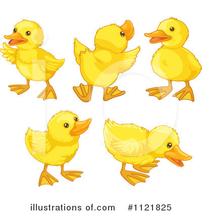 Duckling clipart. Of duck cute clip