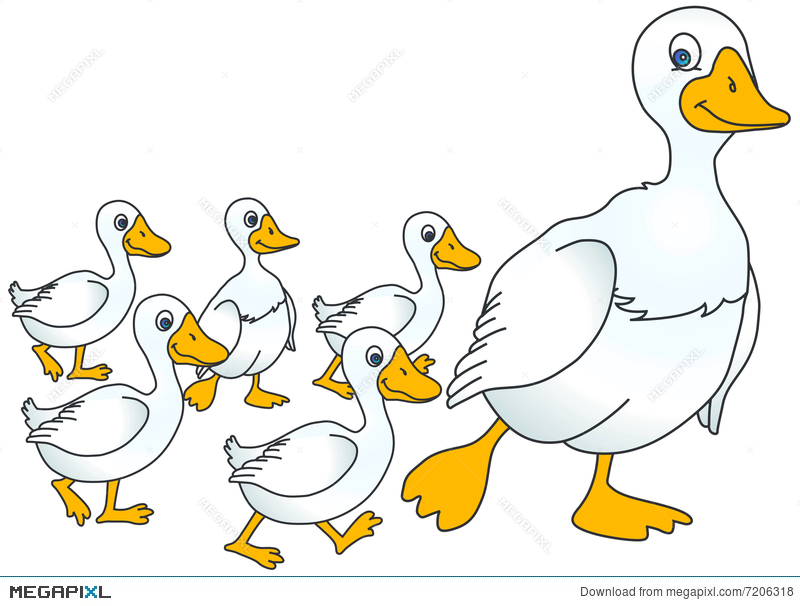 Duckling clipart baby goose. Mother and geese illustration