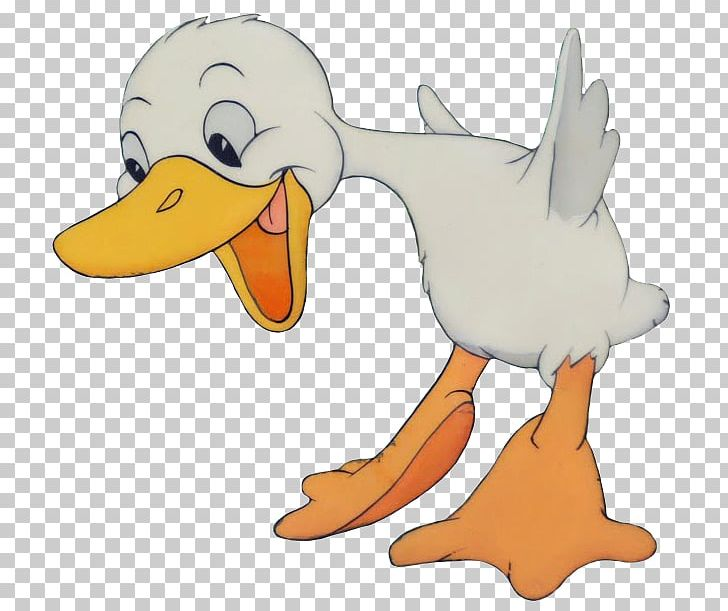 The ugly mallard png. Duckling clipart duck tail