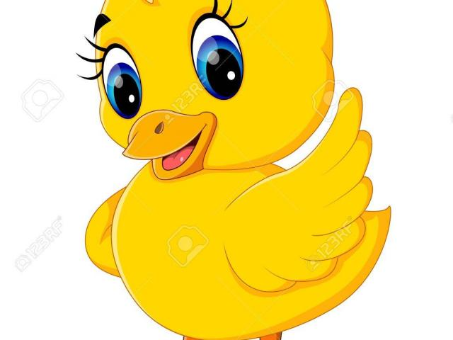 Duckling clipart female duck. Free download clip art
